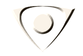 Icon Security λευκό λογότυπο